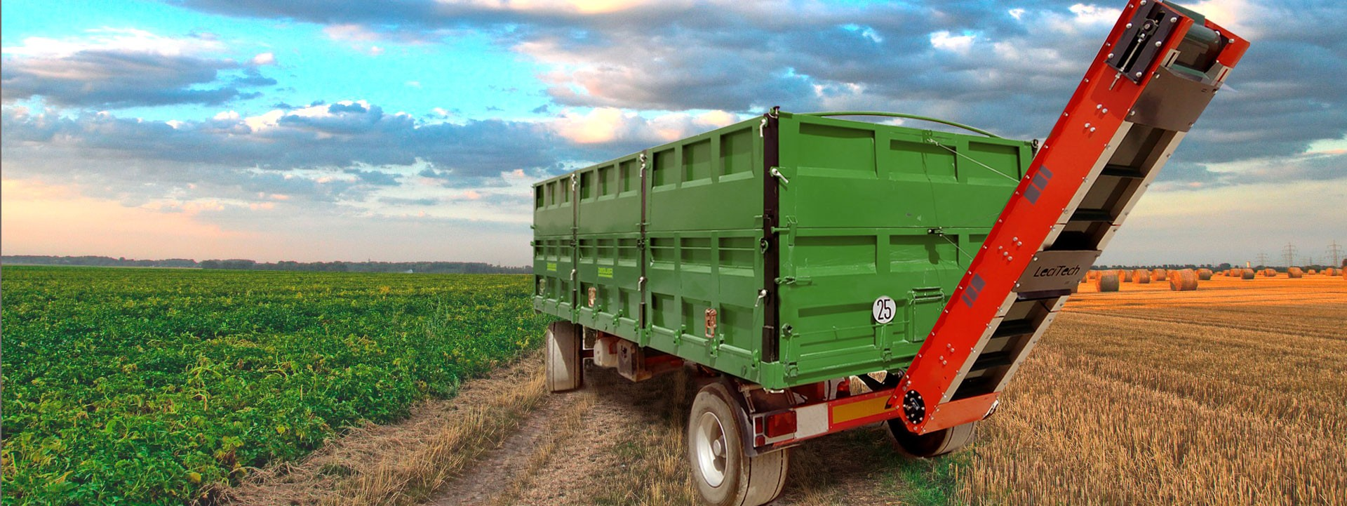 Imagen de banda transportadora para semillas delicadas
